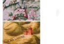 I castelli della Valceno nelle antiche mappe, piante e disegni N. 4 -ROCCALANZONA (Medesano)